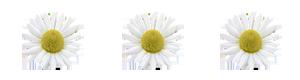 87136646_96_aramat (300x80, 10Kb)