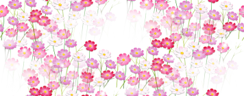 prozrac) (266) (356x140, 138Kb)