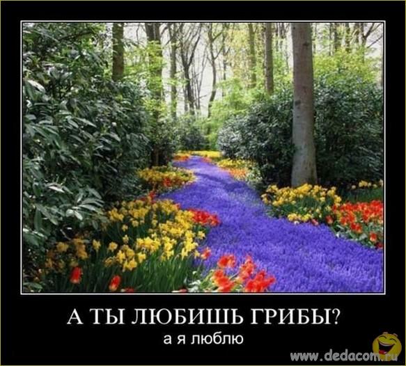 Image00005 (583x526, 99Kb)