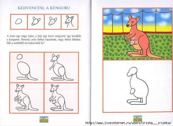 Как рисовать кенгуру с детьми
