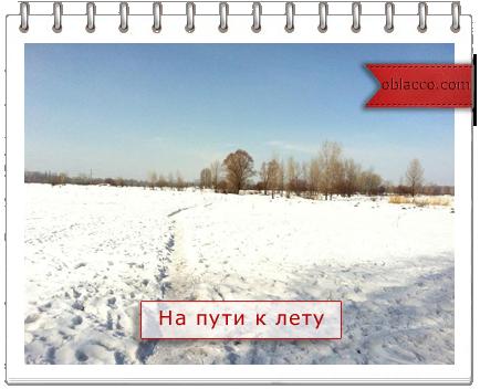 Прогулка 24-го дня)