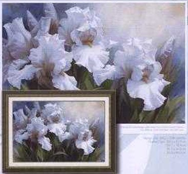 White Irise Elegance I
