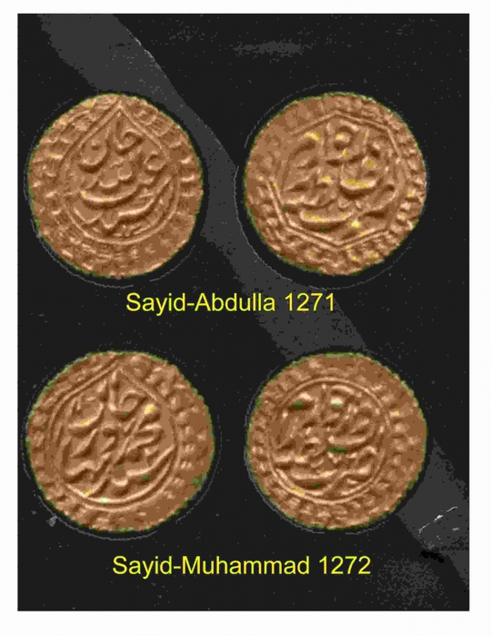 4269648_sayid4 (540x700, 213Kb)