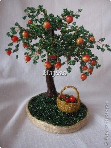 Яблоня своими руками