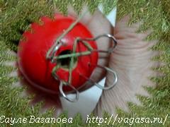 14 (240x180, 31Kb) http://vagasa.ru/