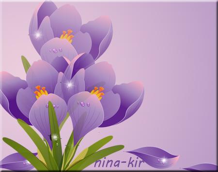 Сиреневый-крокус (450x356, 158Kb)