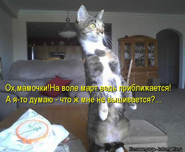 kotomatritsa_JZ (700x577, 57Kb)
