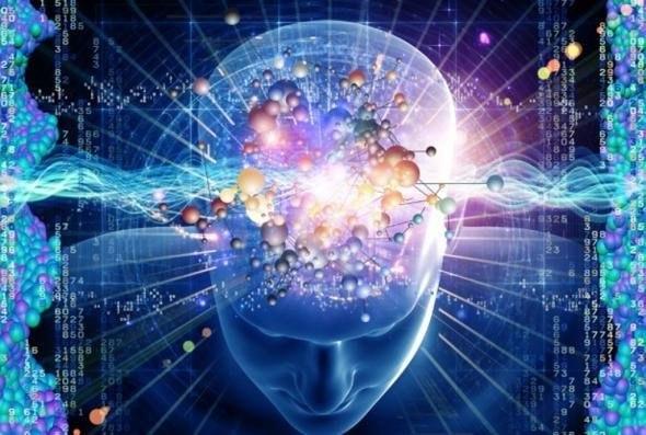 мозг (590x397, 61Kb)