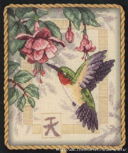 Exquisite Hummingbird (416x496