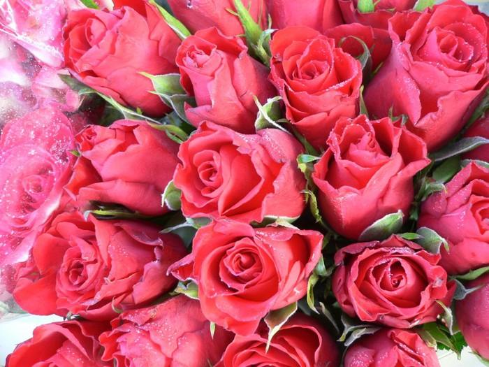 Цветы самой красивой девушке картинки 2