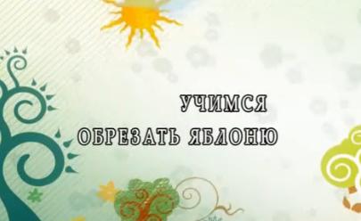 Безымянный23 (405x248, 118Kb)