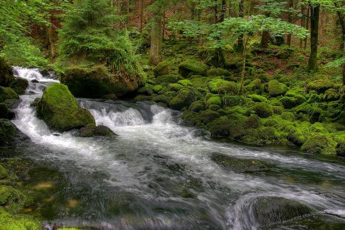 Водопад La Tine de Conflens, Швейцария 36446