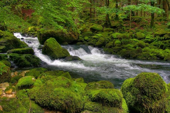 Водопад La Tine de Conflens, Швейцария 58397