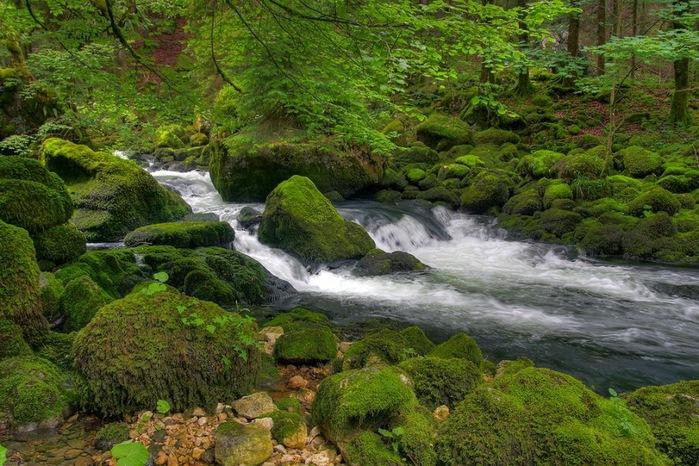 Водопад La Tine de Conflens, Швейцария 18624