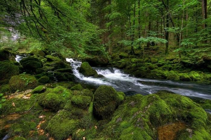 Водопад La Tine de Conflens, Швейцария 75656