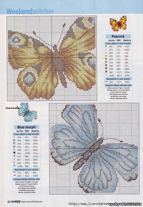 babochka-10-2 (484x699, 109Kb)