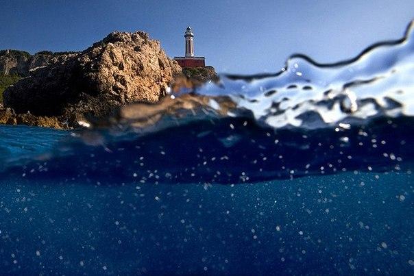 подводная фотография Alessandro Catuogno 4 (604x403, 54Kb)