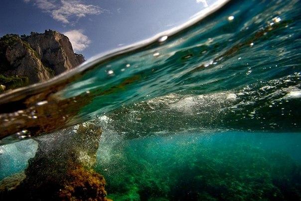 подводная фотография Alessandro Catuogno 6 (604x403, 65Kb)