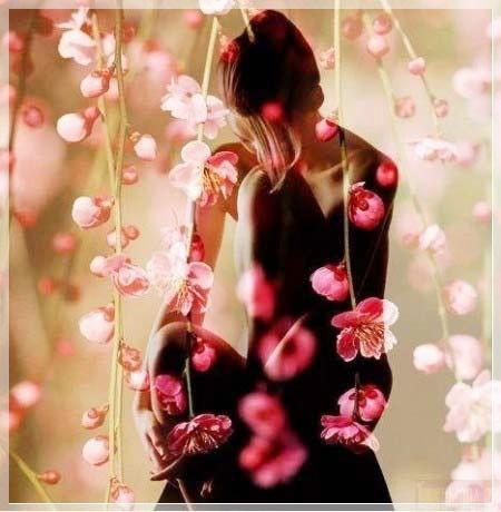 цветок любви фото: