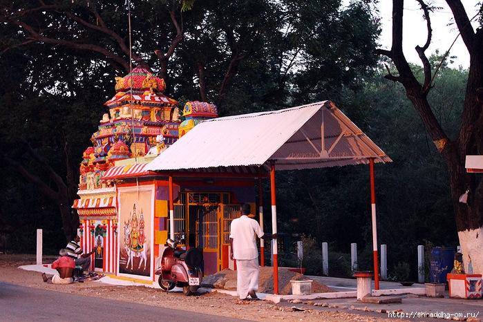 Индия, Тируваннамалай, 2012, 104 (700x466, 333Kb)