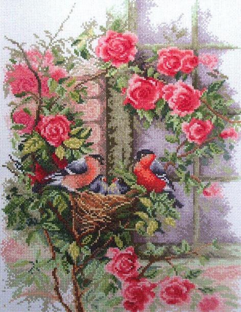 Stitchart-Nesting-Birds-in-Rambling-Roses0 (472x611, 159Kb)