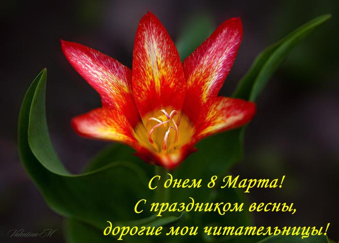 8 марта/3185107_otkritka_8_marta_1 (700x501, 136Kb)