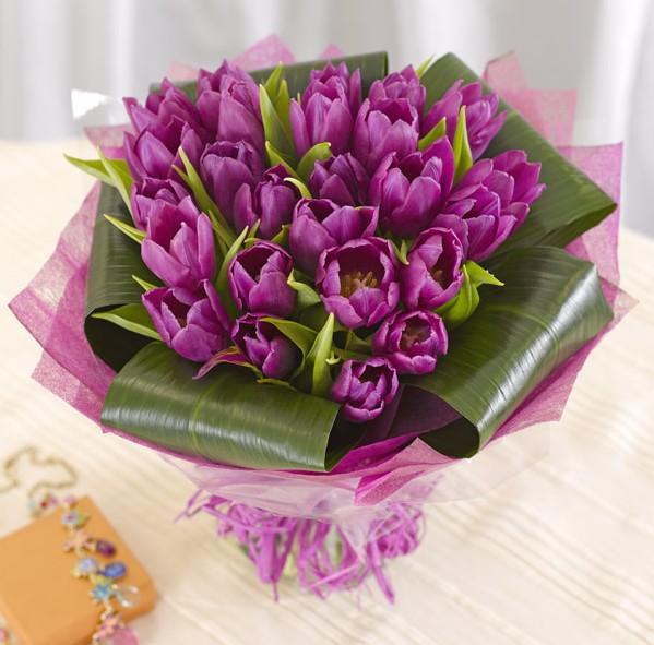 tulip-1831 (599x591, 84Kb)
