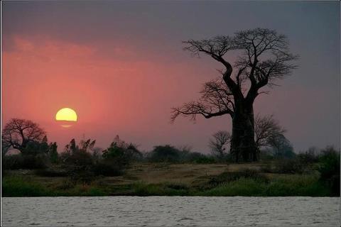 Малави, Африка (480x320, 18Kb)