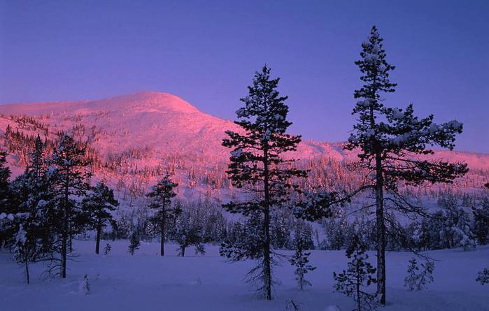 Рассвет на Аляске (700x445, 53Kb)