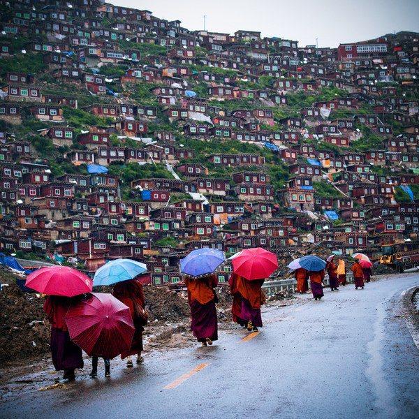 Тибет (600x600, 131Kb)