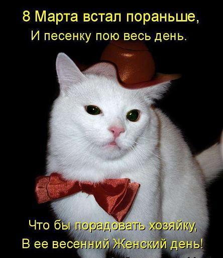 1207817_1330191903_1236334750_hiop_ru_kotomatrix_08 (444x514, 36Kb)
