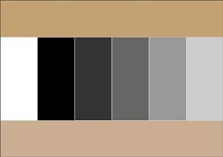 сочетание цветов5 (314x222, 5Kb)