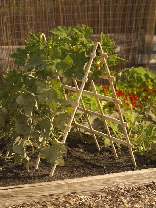 Украшения садового участка фото