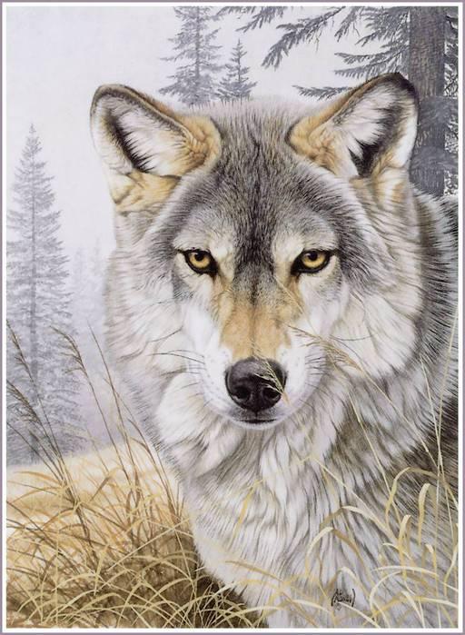 Вышивка бисером волки схемы.