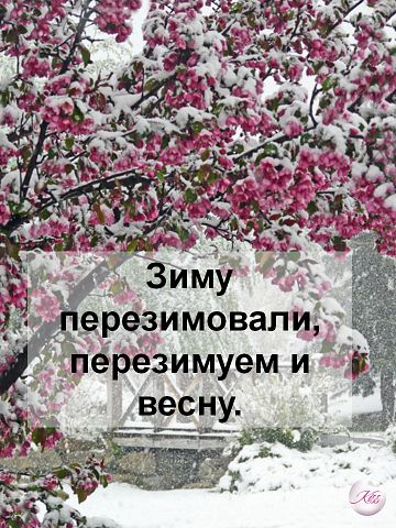 98350813_1362970599_getImage.jpg