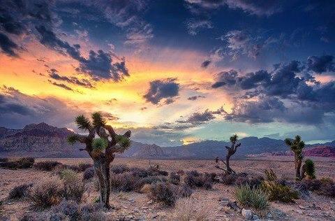 Рэд Рок Каньйон, Штат Невада, США (480x316, 46Kb)
