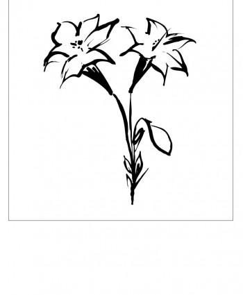 Floral-1-350x425 (350x425, 18Kb)