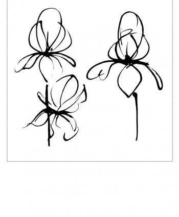 Floral-9-350x425 (350x425, 23Kb)