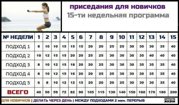 4138790_SPyF3Shojc (604x354, 61Kb)