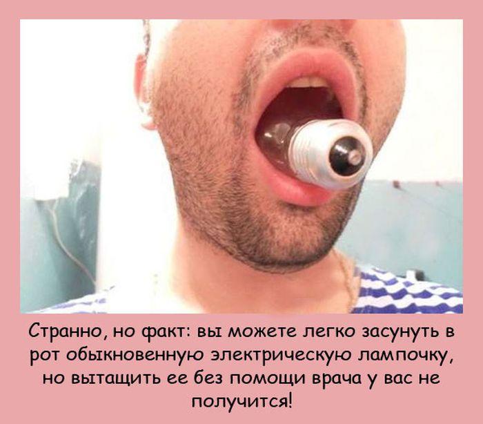 1354303457_fakty-v-kartinkah-14 (700x614, 70Kb)