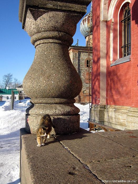 Котик из Старой Ладоги, 1 (525x700, 434Kb)