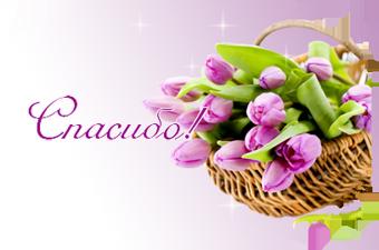 тюльпаны (340x225, 119Kb)