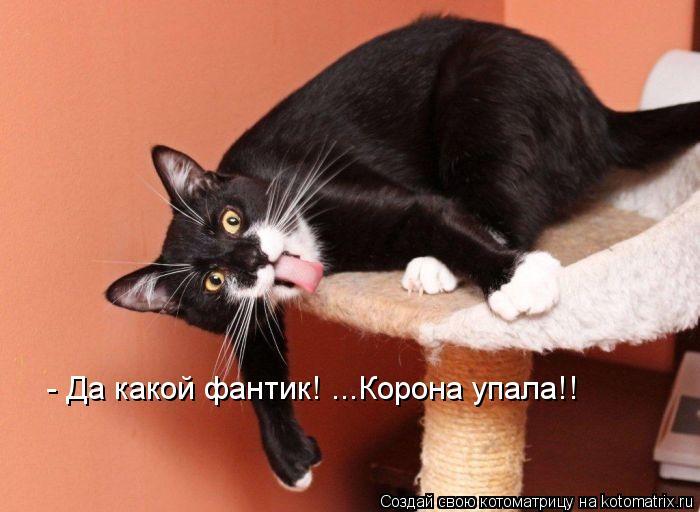 kotomatritsa_ol (700x512, 49Kb)