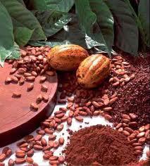 kakaoo (213x236, 13Kb)