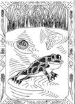 Превью лягушка (509x700, 254Kb)