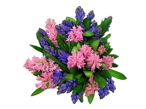 Букеты цветов получать сонник