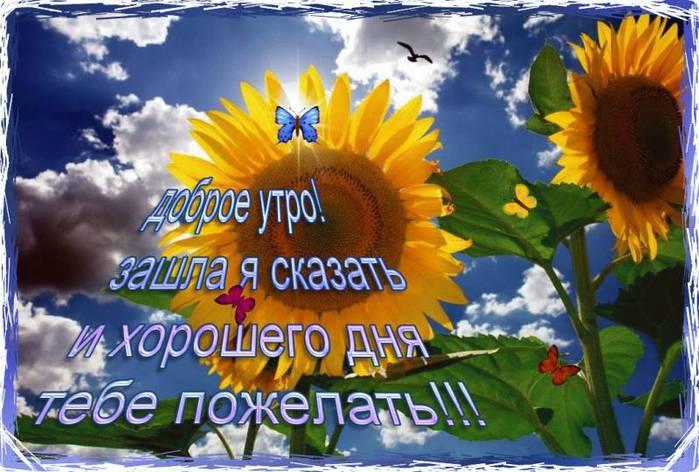 http://img1.liveinternet.ru/images/attach/c/7/98/610/98610347_zashla_pozhelat_dobrogo_dnya.jpg