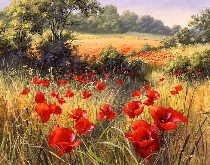 A Host of Poppies.