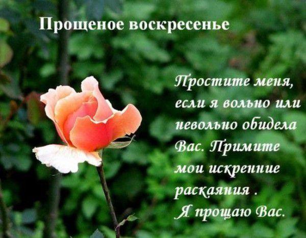 proxy.imgsmail.ru (600x467, 53Kb)