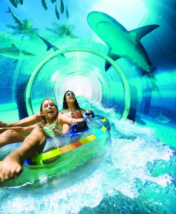 Tubarão-Attack-Aquaventure (574x700, 543Kb)